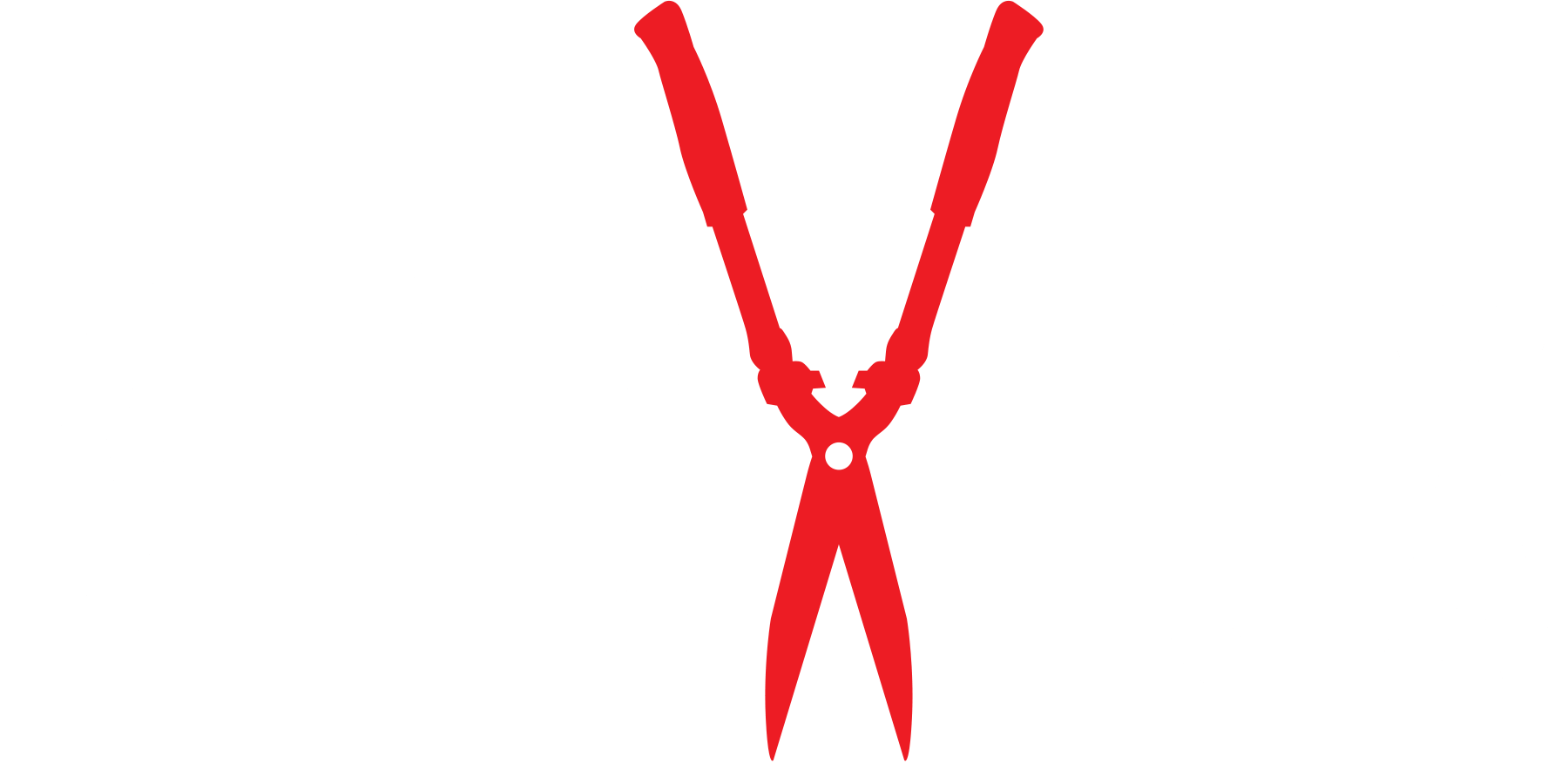 Mad Fox Films